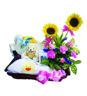 Flower Basket & New Born Baby Gift